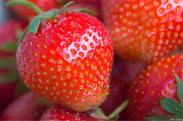 冬季吃草莓美白还养生,但这4种人群要小心吃